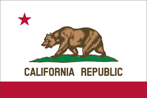 5' x 8' California Flag for outdoor use