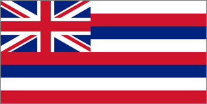 4' x 6' Hawaii Flag for outdoor use