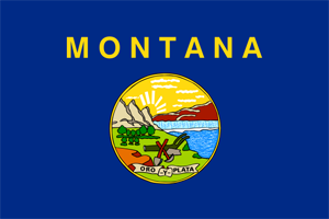 2' x 3' Montana flag for outdoor use